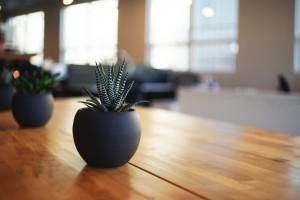 Plantas de Oficina – Estas son las Mejores - Alquiler de Oficinas en ...
